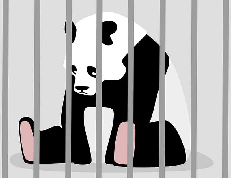 "Thought Leadership vs ""Filler"" Content: How to Avoid Google's Panda Penalty"